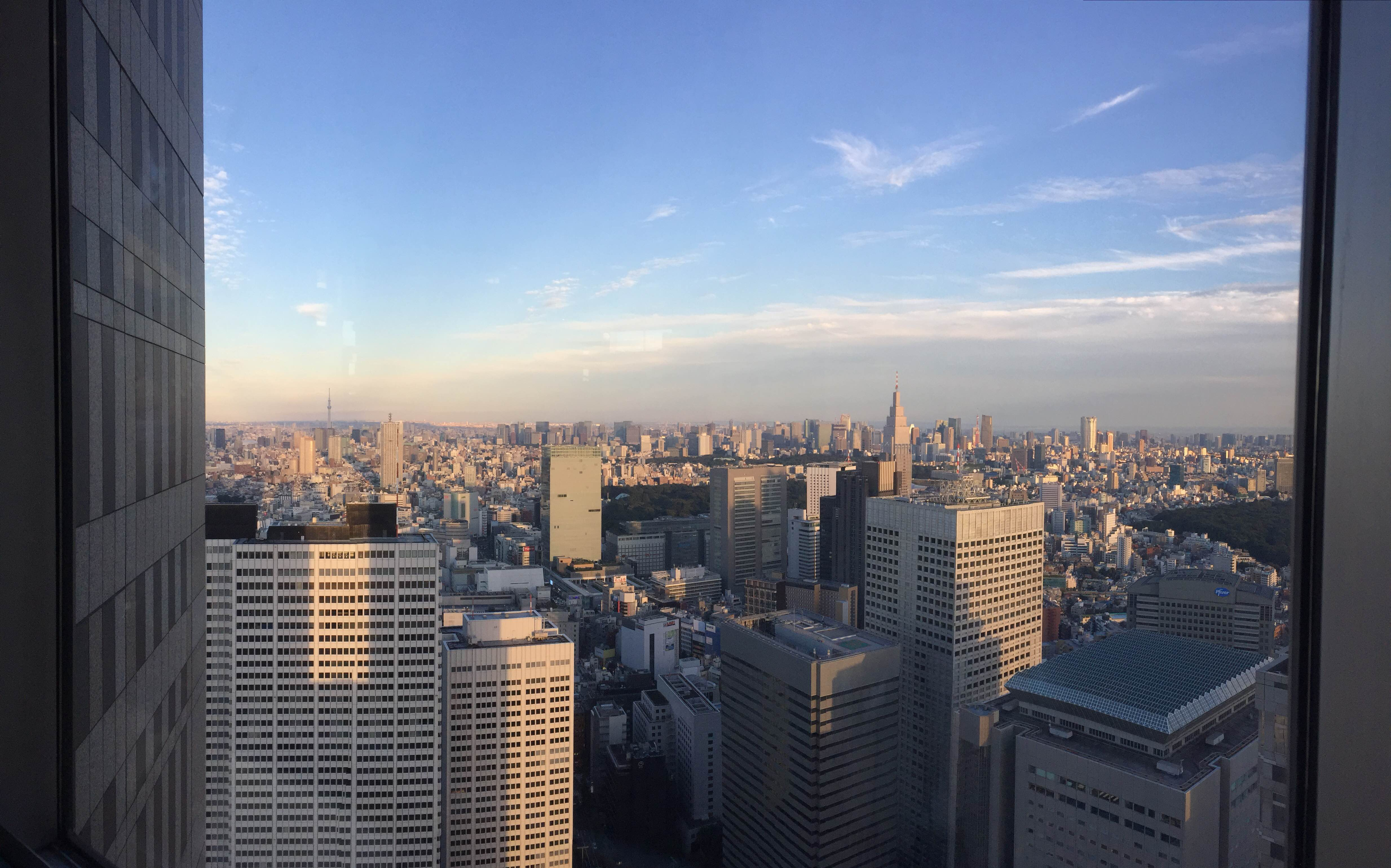 東京タワーとスカイツリー.JPG