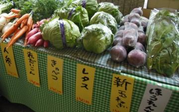 有機野菜④
