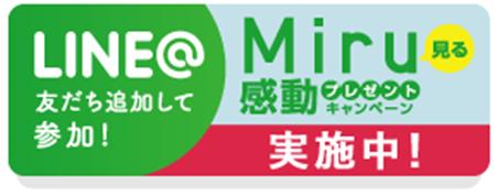 Miruキャンペーン.png