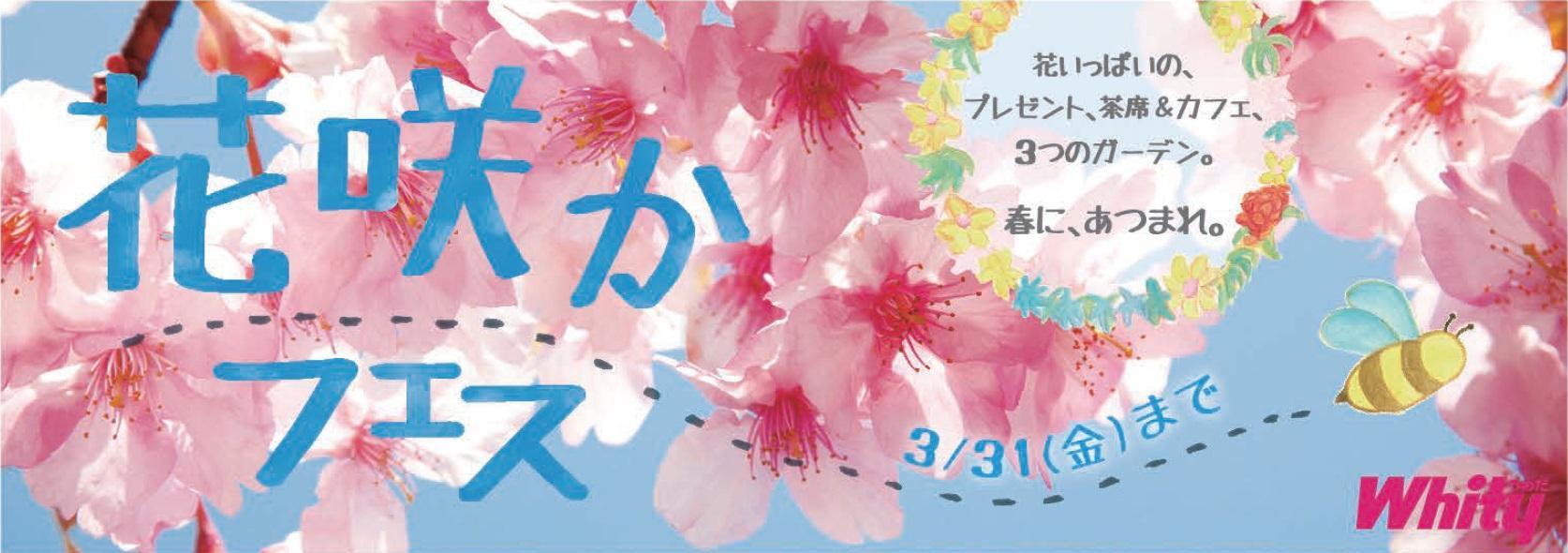 20170306151300_hanasaka_banner1.jpg